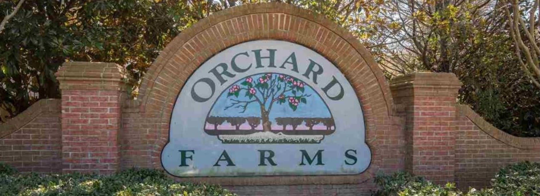 Orchard Farms, Greenville County, SC - Area Info | Berkshire