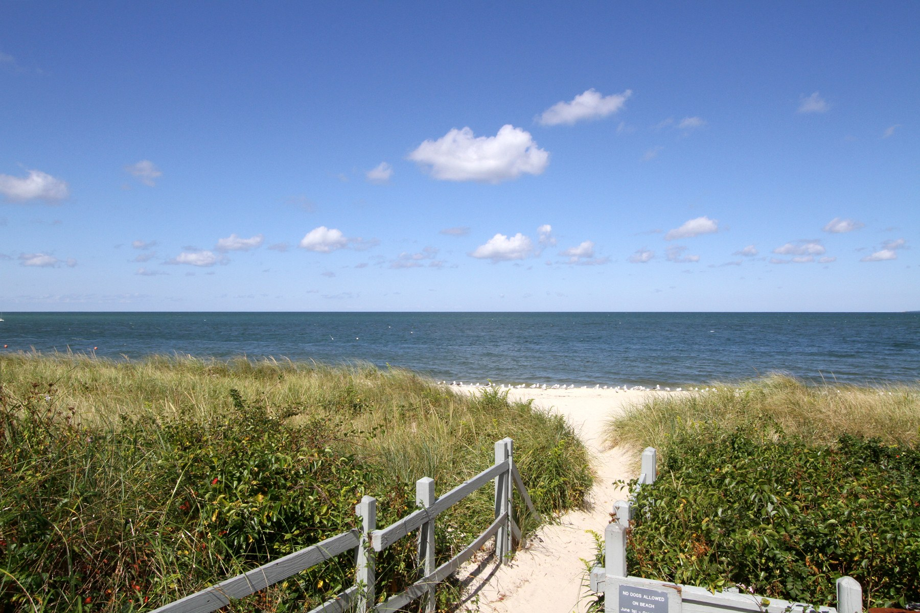 257 sea pines drive 257 brewster ma 02631 brewster gibson sotheby s international realty - Pinne dive system ...
