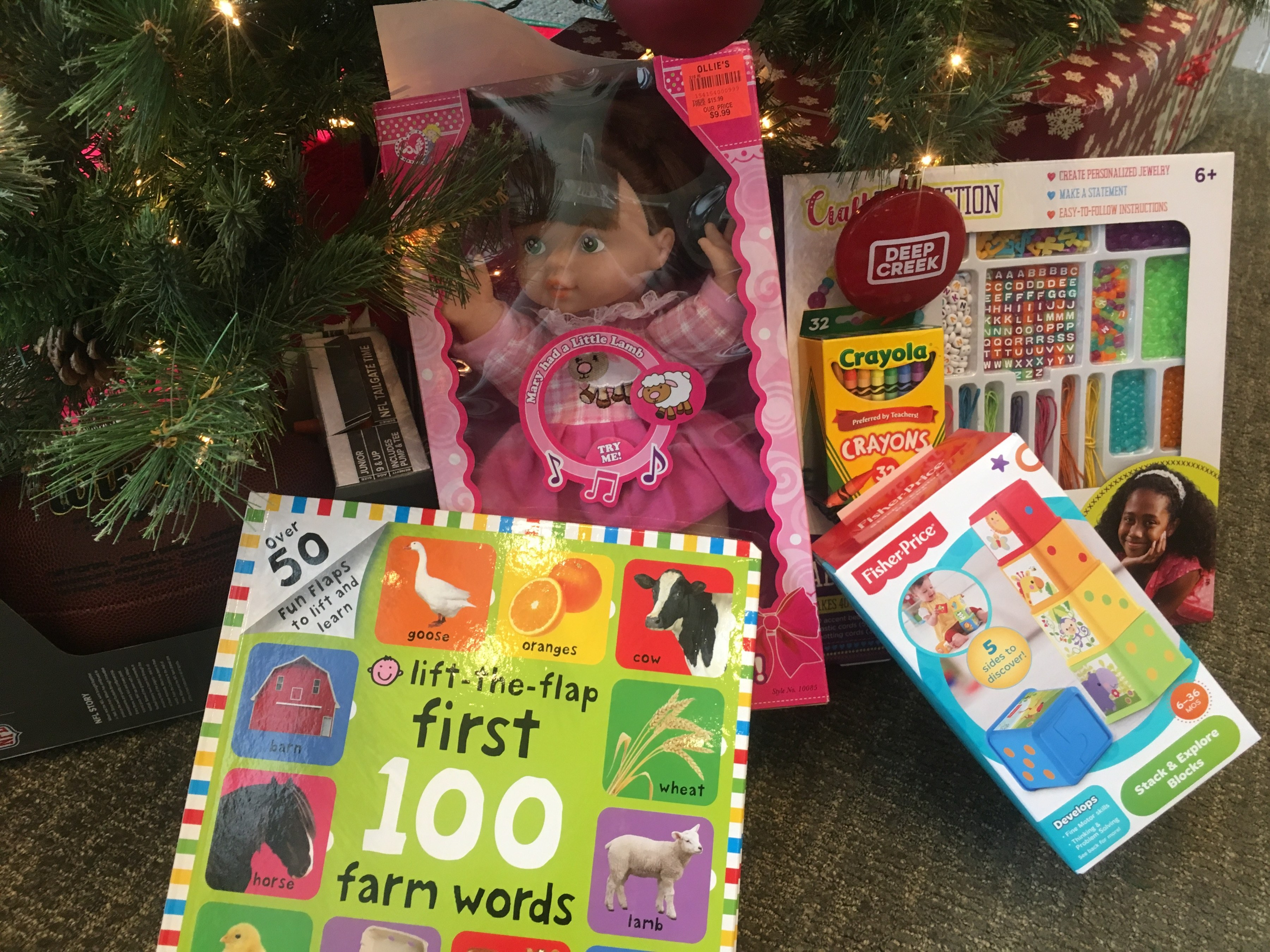 Railey Realty Donates To Rotary Christmas Project